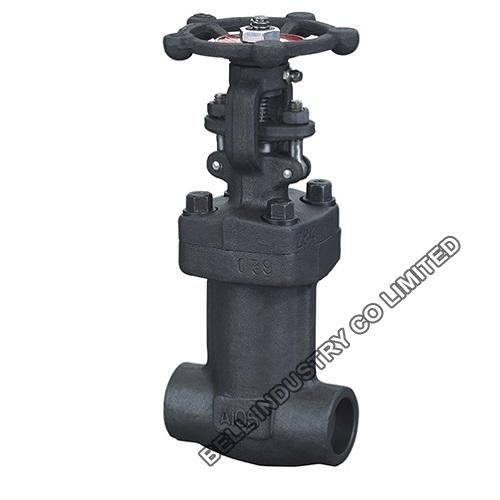 Forged Steel A105n Bellow Seal Globe Valve